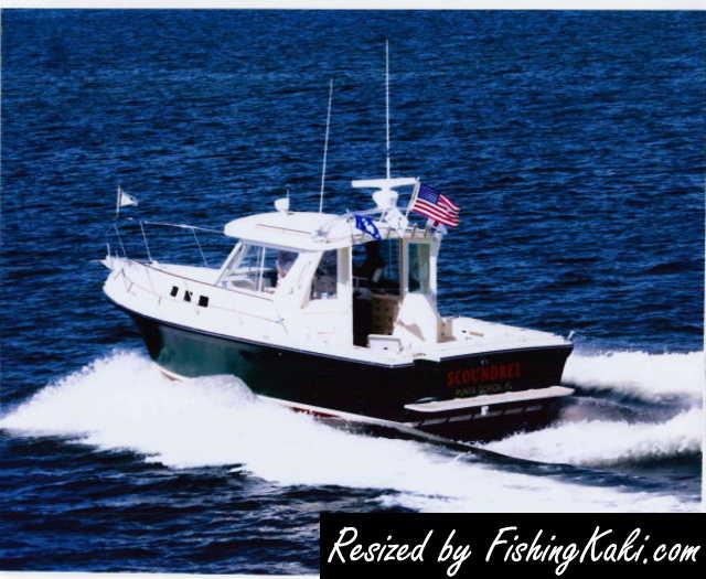 Albin 28 boat - inboard diesel engine - FishingKaki com